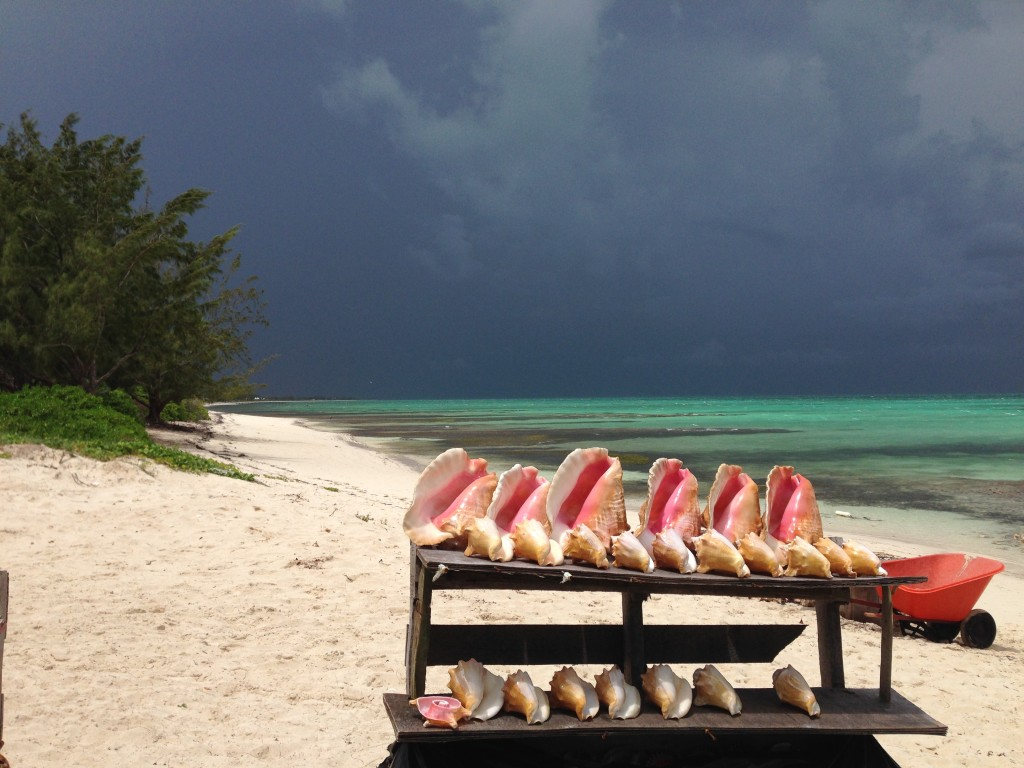 Da Conch Shack beach view with conch shells