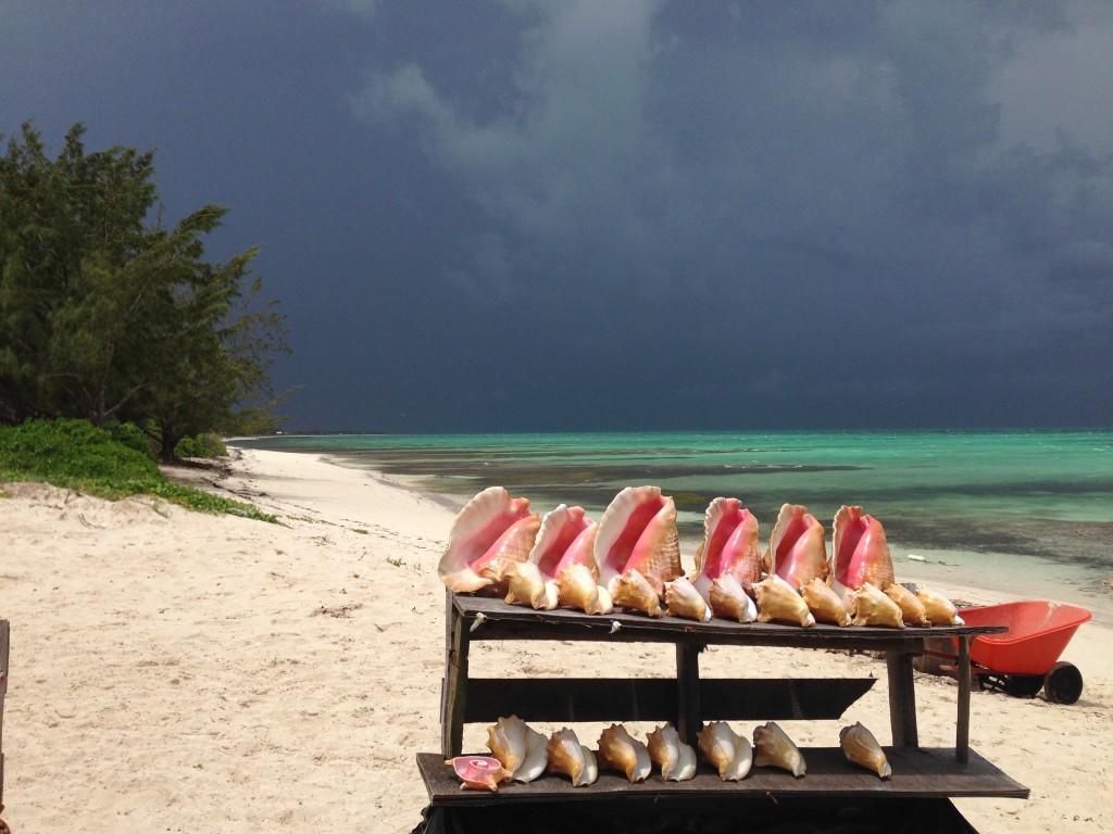 Da Conch Shack beach view with conch shells