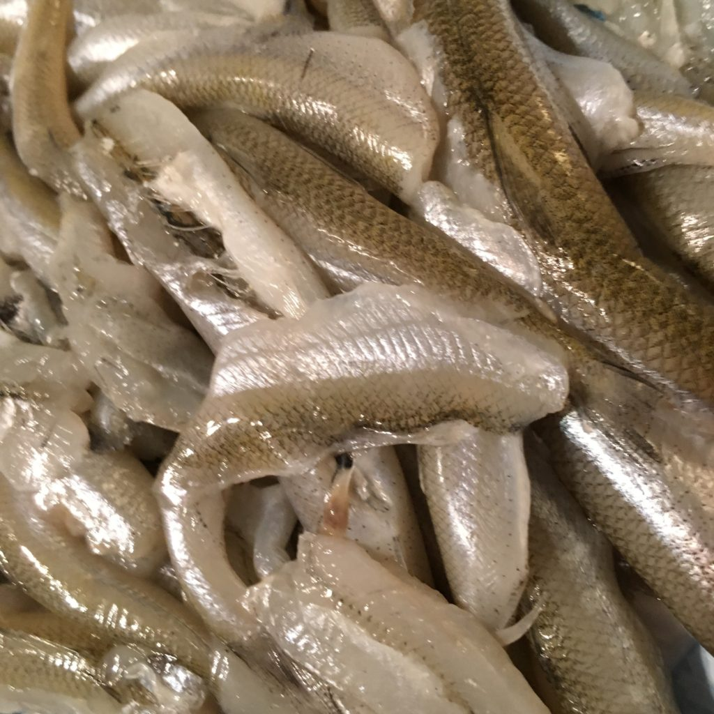 Fresh Smelt (headless and cleaned)