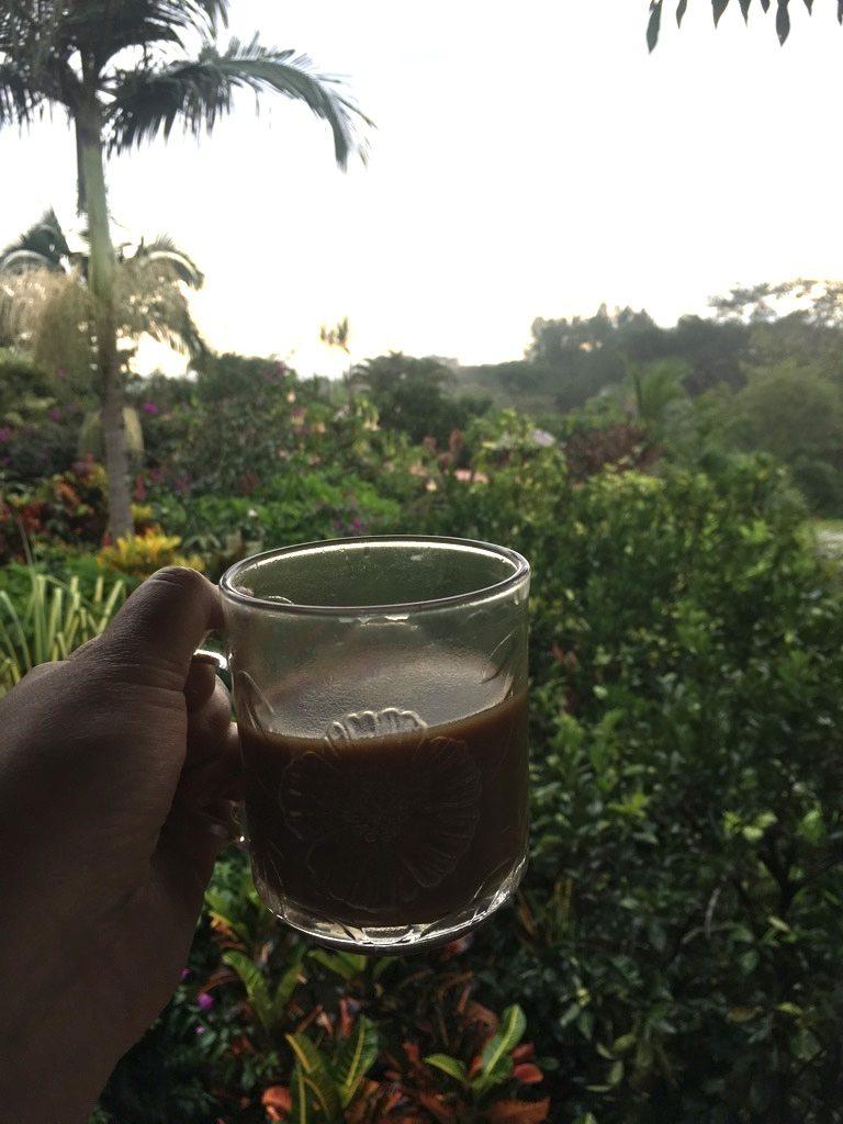 Balcony morning view